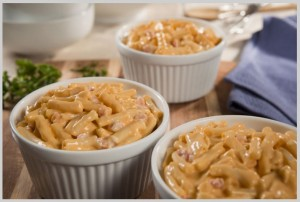 Wise Food Storage - Entrée: Cheesy Macaroni