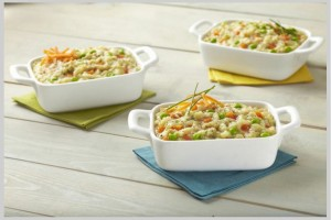 Wise Food Storage - Entrée: Chicken flavoured Potato Pot Pie